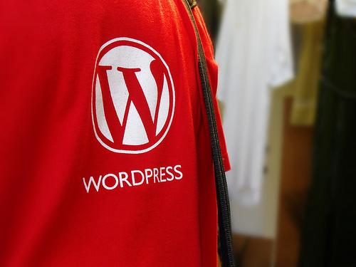 Logo-ul WordPress pe un tricou